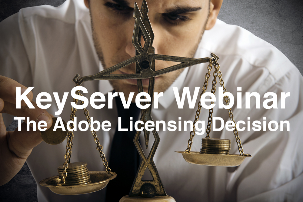 The Adobe Licensing Decision